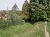 Jogging_des_Monts2_14052015_034